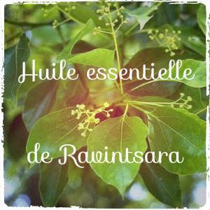 Huile essentielle de base: le Ravintsara