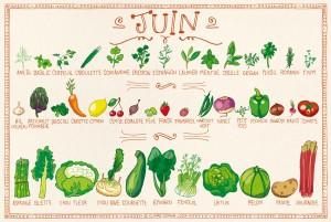 Fruits et légumes de Juin: l'été arrive dans nos assiettes!