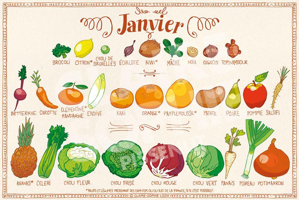 e45131f9a41 Fruits et légumes de janvier  faites le plein de vitamines