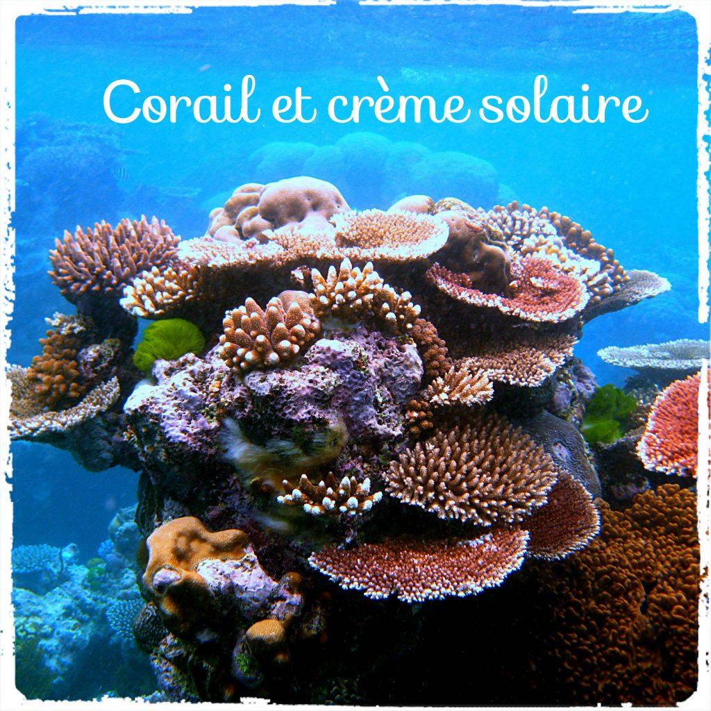Les crèmes solaires tuent le corail