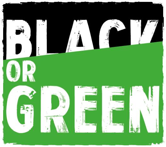 Green Friday ce vendredi 23 novembre