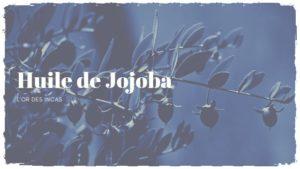 L'huile de jojoba, l'alliée des peaux grasses
