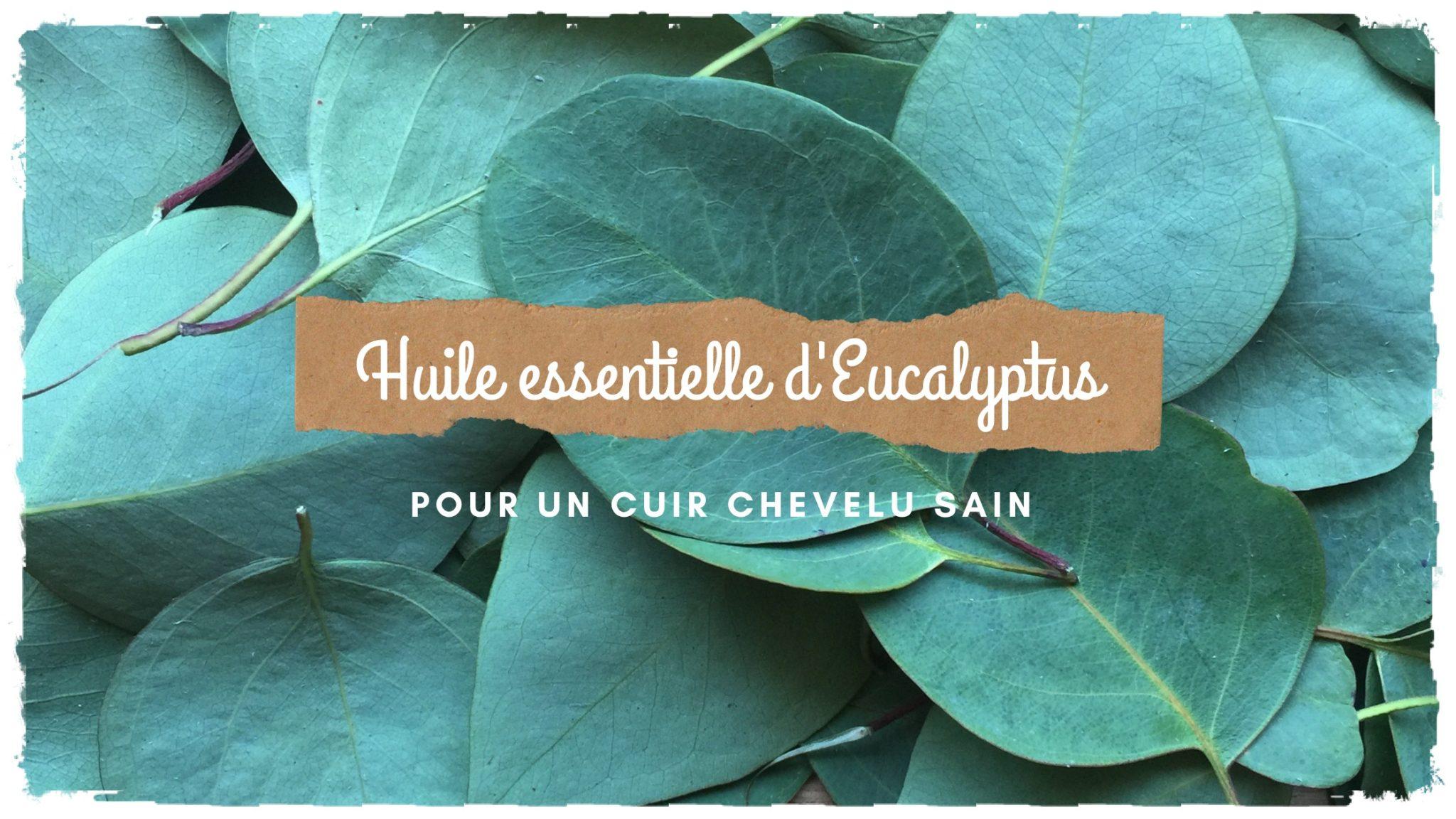 Un cuir chevelu sain avec l'huile essentielle d'Eucalyptus